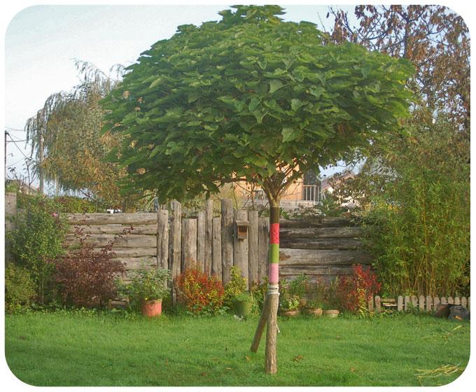 Yarn Bombing DIY au jardin AVANT