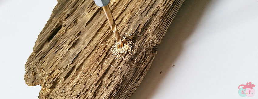 trous dans bois flotté