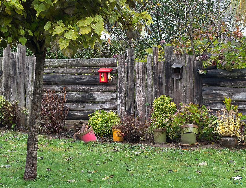 mangeoire pour oiseaux au jardin