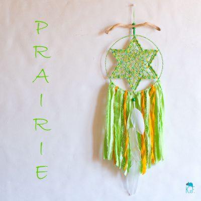 dreamcatcher-prairie-2