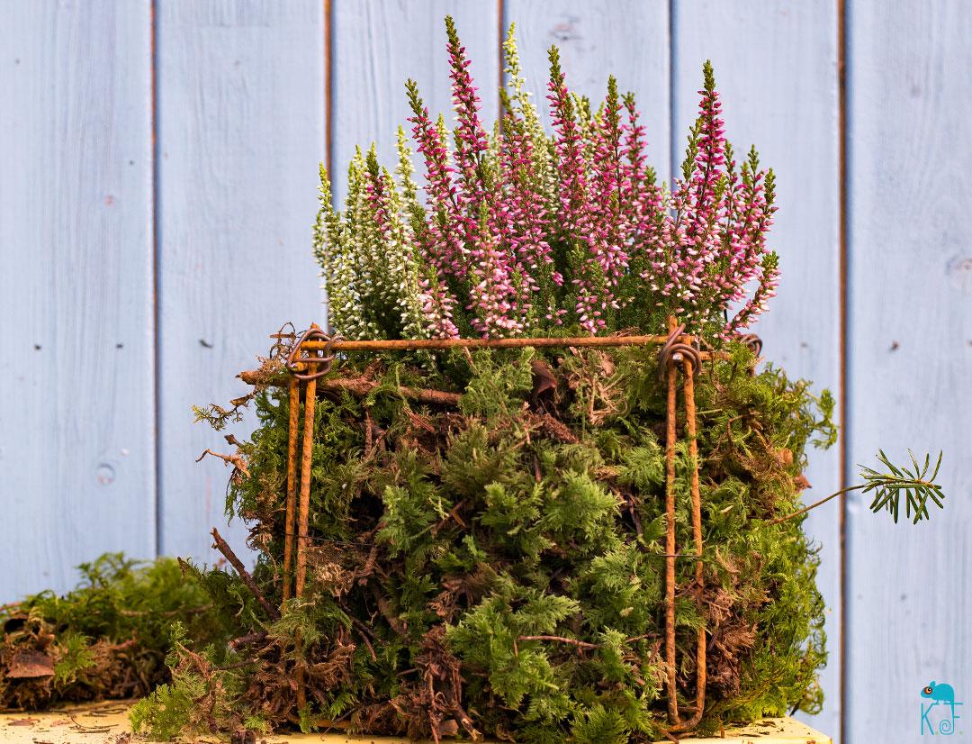 DIY jardinière en treillis métallique