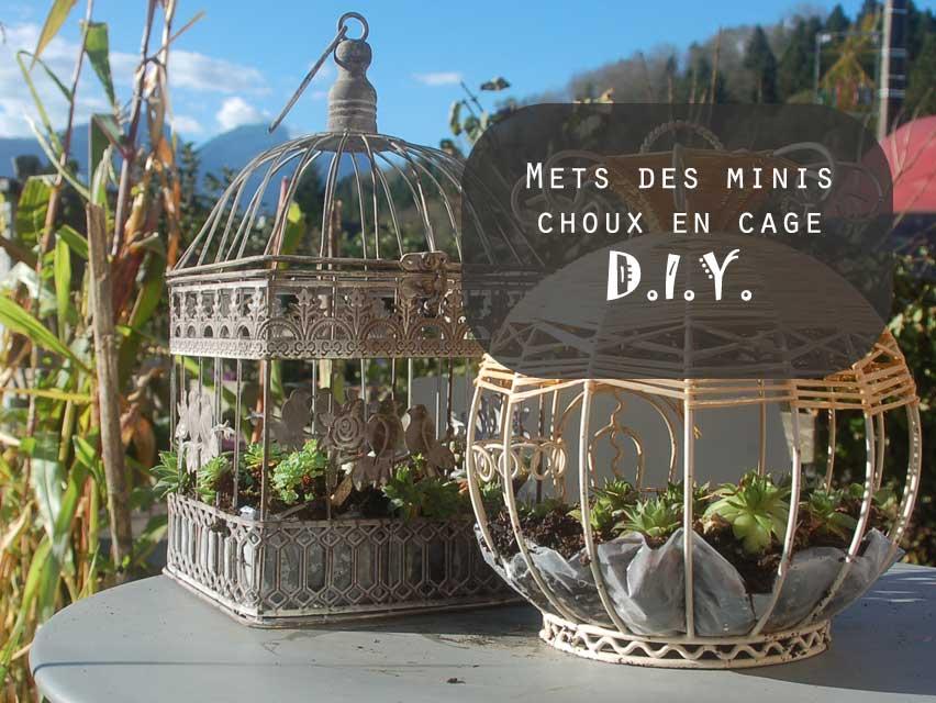 DIY Choux en cage par Kameleon Factory
