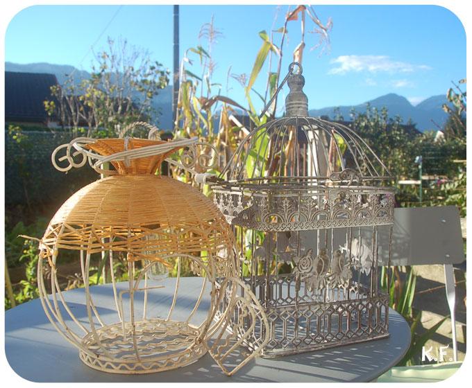 Choux en cage matériels par Kameleon Factory