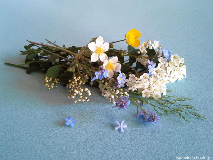 Cueillir les fleurs du Jardin
