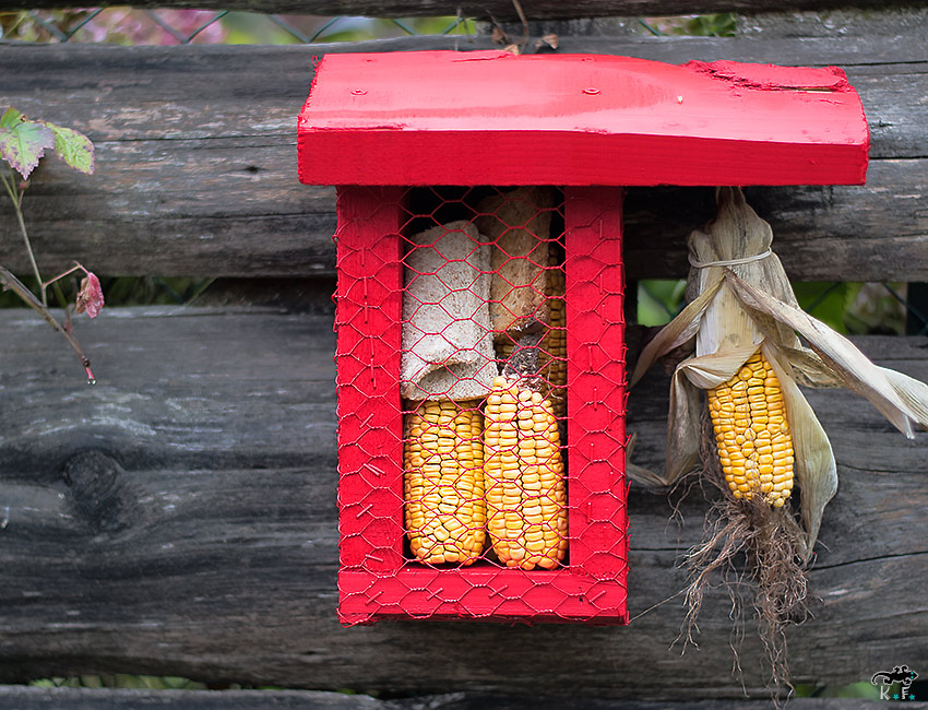fabriquer un mangeoir pour oiseaux