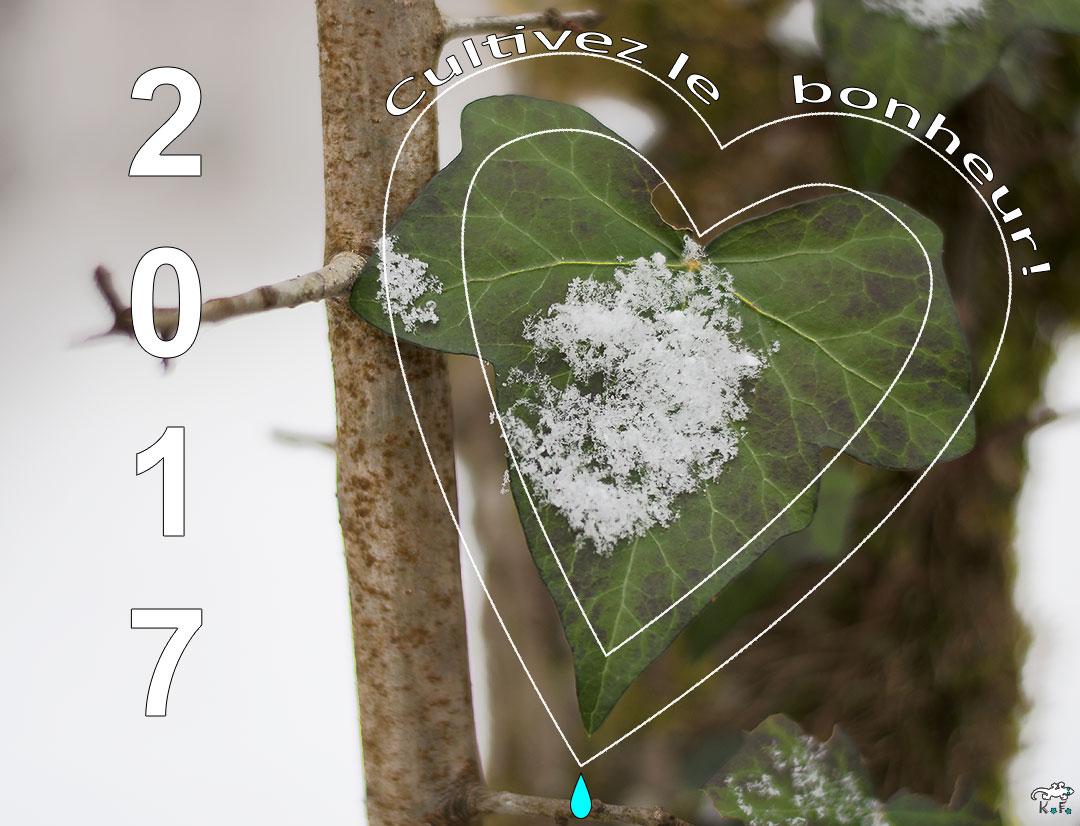 carte de voeux 2017 esprit nature